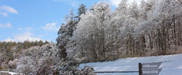 冬の公園(雪化粧)